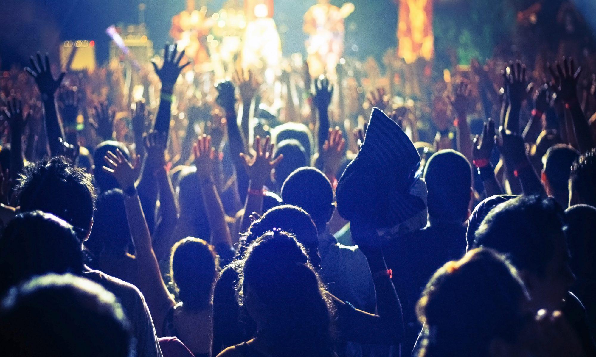 tłum ludzi podczas koncertu na festiwalu muzycznym