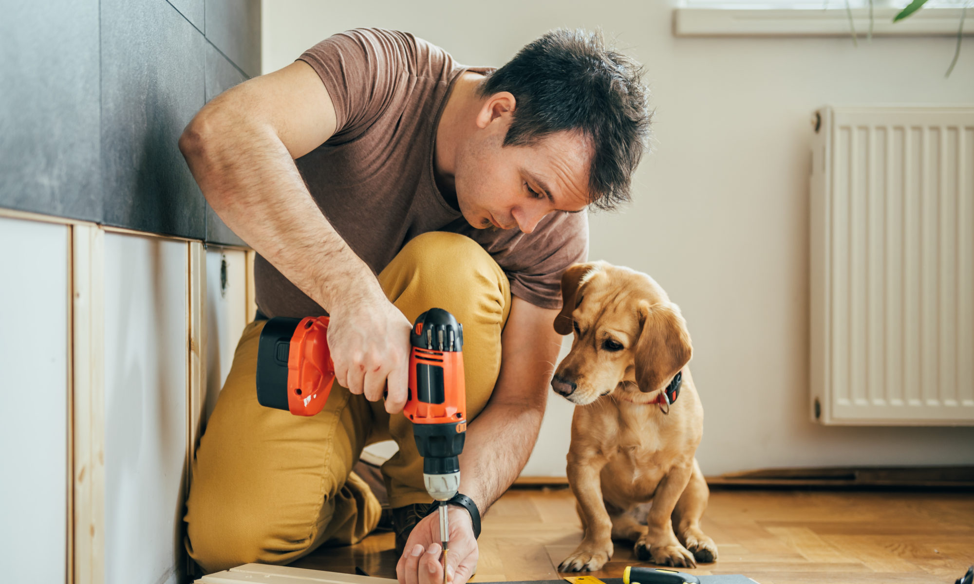 przystojny mężczyzna robiący remont z psem