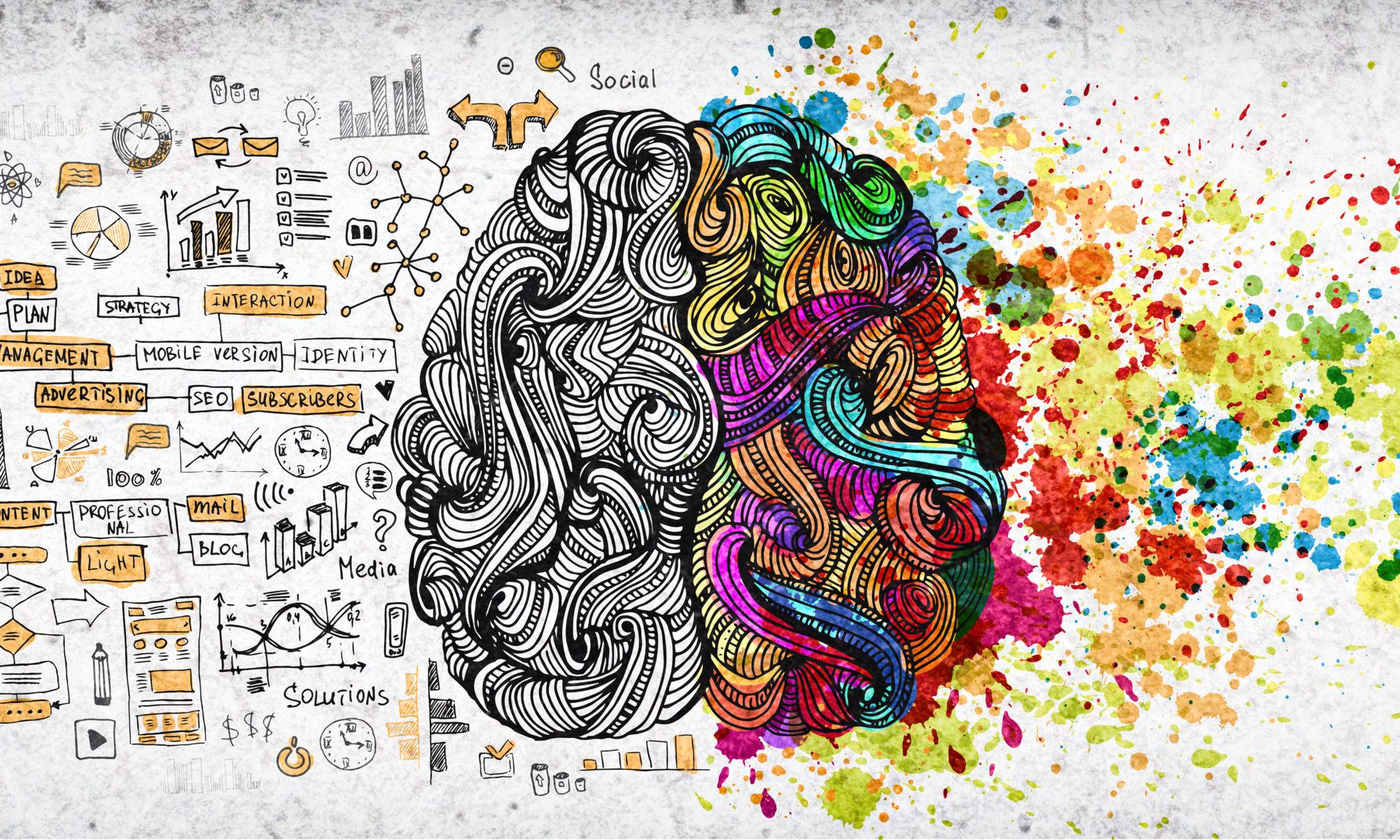 mózg rycina